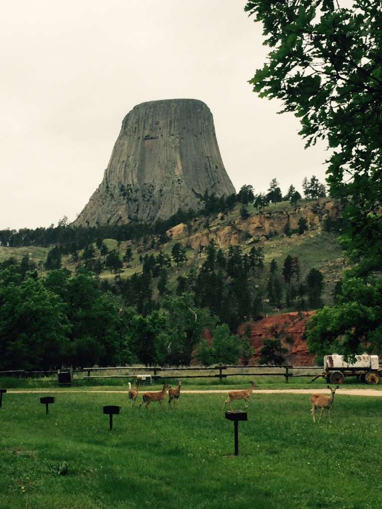 devils tower campground wyoming