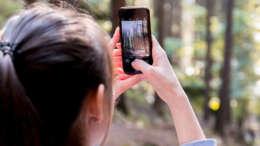 woman using smartphone outdoor app